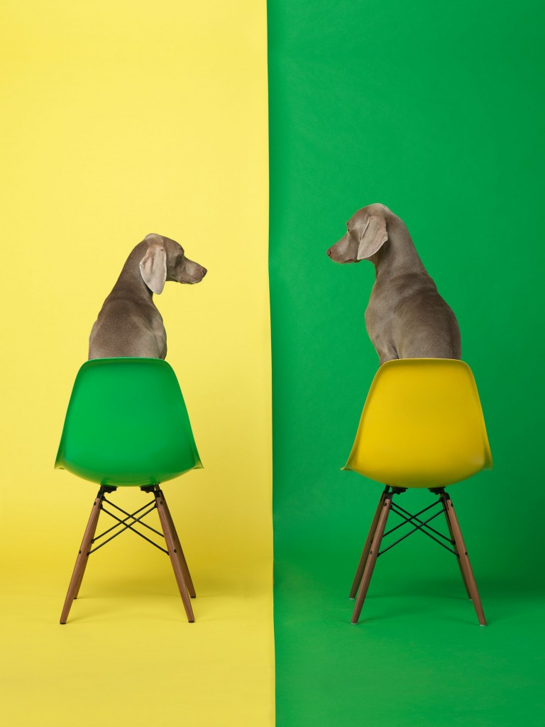 "The Pop-feeling ""Yellow Two Green,"" 2015, summarizes the promise of summer — what more can you ask for than a good dog and a nice Eames chair?"