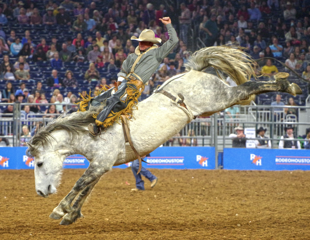 Bareback rider Will Lowe wasn't born into a rodeo family, but he pursued his passion and won three world championships. (Photo by Houston Livestock Show & Rodeo.)